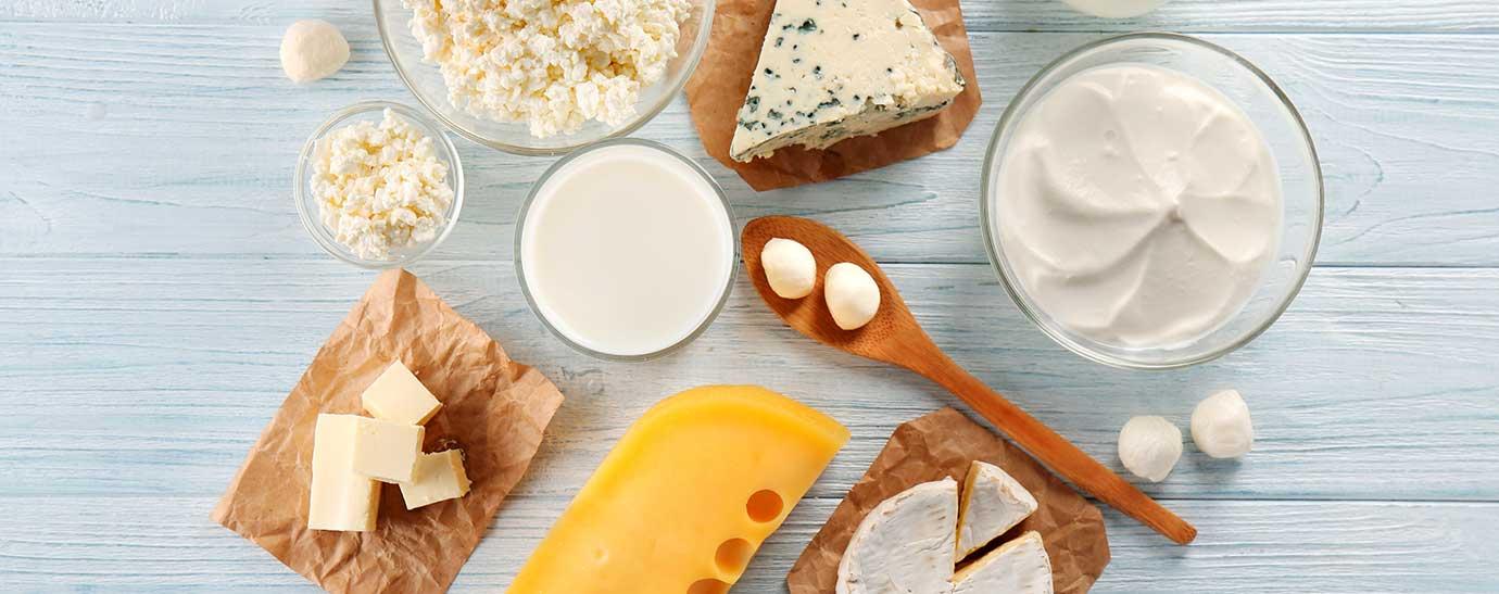 Muestra de quesos y otros productos lácteos
